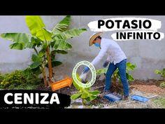 900 Ideas De Huerto En 2021 Huerto Cultivo De Plantas Jardinería