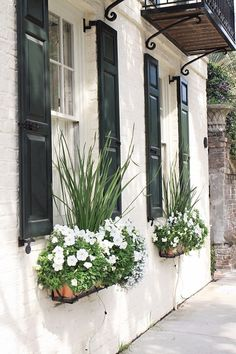 Window Box Ideas & Free Printable Beautiful window box ideas and tips from Charleston! These flower box ideas can help improve curb appeal! Also, get a pretty, free Charleston window box printable too for spring decor! Diy Exterior, Exterior Design, Hardscape Design, Window Box Flowers, Diy Flowers, Diy Flower Boxes, Flower Ideas, Window Planter Boxes, Window Box Plants