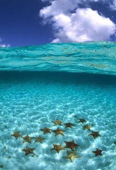 Turquoise waters of Bora Bora