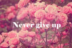 never give up | via Tumblr
