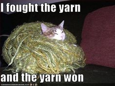 I fought the yarn and the yarn won!