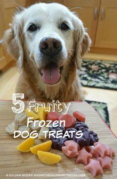 5 Fruity Frozen Dog Treats