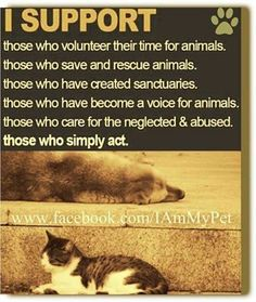 PLEASE GET INVOLVED!  Never before in the history of animal welfare have the incidents of worldwide animal abuse been so heinously brutal!  BE A VOICE FOR THE VOICELESS!