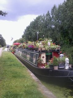 Barge selling plants on the Grand Union Canal near Kensal Green.