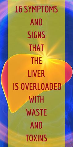 One of the most important organs in the human body is the liver. It is the organ responsible for filtering the blood and eliminating toxins. Besides this primary function, …