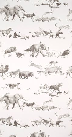 This animal wallpaper looks great, but I'm not sure how it would look in a space.