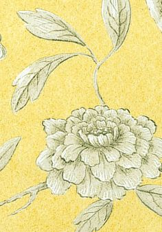 Jasper Peony: Georgian Yellow wallpaper from Lewis and Wood