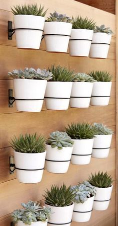 Do you have a blank wall? do you want to decorate it? the best way to that is to create a vertical garden wall inside your home. A vertical garden wall, also called a living wall, is a collection of… Continue Reading → Plantador Vertical, Vertical Garden Design, Vertical Planter, Vertical Gardens, Succulent Wall Planter, Succulent Display, Succulent Ideas, Diy Wall Planter, Porch Planter