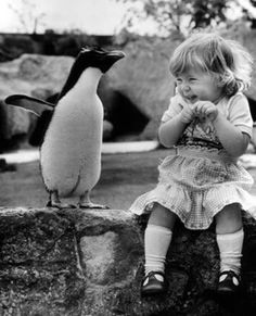 Yes, this funny penguin makes this girl laugh. What did the penguin say that was so darn funny? Here's four possibilities: Q: Whats a penguins favorite relative? Cute Kids, Cute Babies, Funny Kids, Baby Animals, Cute Animals, Funny Animals, Baby Cats, Tier Fotos, Jolie Photo