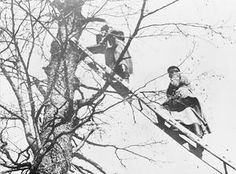 WWI, 1915; Russian soldiers climbing up to a observation post in a tree in Galicia (the Austro-Hungarian partition of Poland). ©IWM (Q 53764)