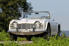 Triumph TR 4.   They called it Powder Blue.  I called it Baby Blue.  Coolest car I've ever owned.