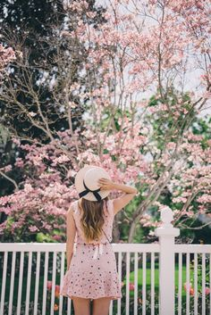 Gal Meets Glam Pink Begonia Lace Dress - Ann Taylor dress and Eugenia Kim hat