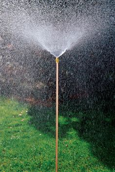 Hi-Rise Lifetime Sprinkler | Buy from Gardener's Supply  Ideal for watering gardens & borders. All-metal construction: copper, powder-coated steel and brass. Heavy-duty steel spike keeps sprinkler standing straight & tall. Waters a 22-foot diameter area  The jet nozzle creates a 360° spray of fine droplets without the need for failure-prone moving parts. Spiked base has a foot tread to make placement easy, and a second fitting so you can connect two sprinklers end-to-end w/ a feeder hose.