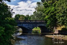 Scajaquida Creek,Forest Lawn Cemetery, Buffalo, NY. Get professionally printed copies of any of my photos at www.JHughesPhoto.smugmug.com, and merchandise featuring my photos at www.CafePress.com/JHughesPhoto