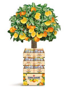 San Pellegrino - Sparkling Fruit Beverages - POS More Pos Display, Display Design, Booth Design, Store Design, Pallet Display, Display Window, Display Ideas, Fruit Packaging, Cool Packaging