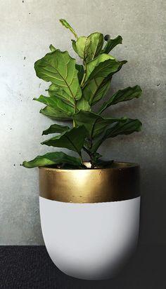 Design Twins Pot in Dip – Terrace Outdoor Living