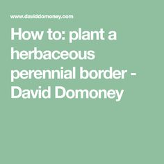How to: plant a herbaceous perennial border - David Domoney