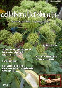 E-magazine collaborativEducation - Les Plumes n°38