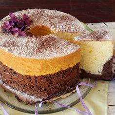 Chiffon cake bigusto soffice delicata e molto profumata
