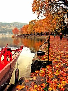 Ioannina Greek Beauty, Greece Travel, Amazing Nature, Country, World, The Secret, Places, Bucket, Christmas