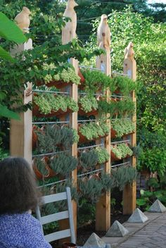 A gat idea for  great way to do herbs. Love it..... A Privacy wall with clay pots