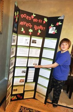 6th grade Elementary School Science Fair Display Regional Science Fair