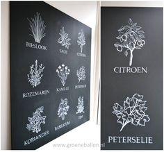 kruiden op krijtbord | paneelschildering | keuken | www.groeneballon.nl | Den Haag