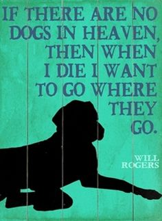 Will Rogers on Heaven Quote - this applies to not only my dogs I've had, but also every other pet I've owned too. <3