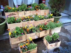 home & garden / Outersports.com