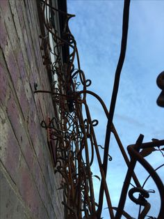 Aspects of wild trellis by Lorraine Philpot, Firle Forge