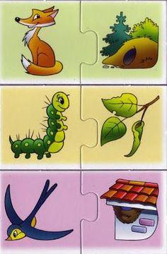 Contigo Crecemos: Animales y sus casas: