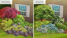 North, South, Mountain, Desert and Pacific Coast regional garden plans for a shade garden near a house