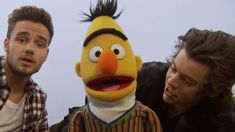 One Direction on Sesame Street - Harry  Liam ABC's!