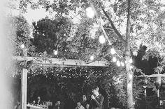 Aaron   Joanne | West Coast Meets Prairies Saskatoon Wedding — Jamie Hyatt Photography | Calgary Wedding Photographer Calgary, West Coast, Christmas Tree, Holiday Decor, Photography, Wedding, Casamento, Xmas Tree, Xmas Trees
