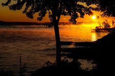 Nature, sunrise, morning, mist, lake