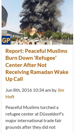 Any liberal want to offer up a room in their home for these peaceful Muslims that you want here so badly? http://www.thegatewaypundit.com/2016/06/report-peaceful-muslims-burn-refugee-center-not-receiving-ramadan-wake-call/