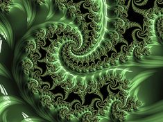 Fractal Art, Fractals, Contemporary Wall Art, Schmidt, Ferns, Black Backgrounds, Fine Art America, Folk Art, Jade