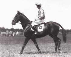Man o' War: A Photographic Tribute - Slideshow - BloodHorse Beautiful Horses, Animals Beautiful, American Pharoah, Man O, Grand National, Horse Racing, Race Horses, Horse Breeds, Thoroughbred