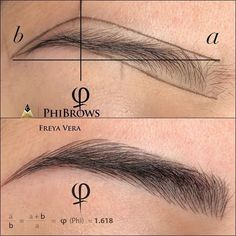 Log in – microblading eyebrows Eyebrow Makeup Tips, Permanent Makeup Eyebrows, Beauty Makeup, Beauty Tips For Skin, Beauty Hacks, Maquillage Yeux Cut Crease, Mircoblading Eyebrows, Eyebrow Design, Phi Brows