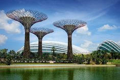 Gardens by the Bay is a park spanning 101 hectares (250 acres) of reclaimed land in central Singapore, adjacent to the Marina Reservoir. The park consist of three waterfront gardens, Bay South, Bay East and Bay Central. Nearest MRT: Bayfront, Exit B