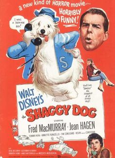 "Movie Poster for the Walt Disney film ""The Shaggy Dog"" starring Fred MacMurray, Annette Funicello, and Tommy Kirk. It was the first live-action comedy produced by Disney. Walt Disney Movies, Classic Disney Movies, Disney Movie Posters, Old Movie Posters, Classic Movie Posters, Disney Live, Disney Classics, Disney Dogs, Disney Fun"