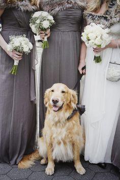 Melhores amigos estão nas horas mais especiais! <3 #Cachorro #Casamento #Sorriso