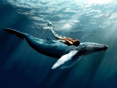 The Mermaid and the Whale,......beautiful