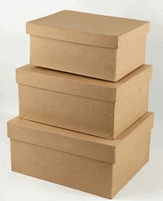 Paper Mache Boxes 8, 9 & 10 in. Rectangle (Save 27%)