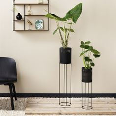 Planting Flowers, Table, Furniture, Design, Home Decor, Florence, Architecture, Plants, Products
