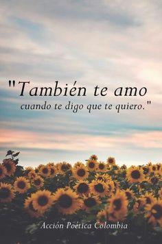 También te amo, cuando te digo que te quiero.