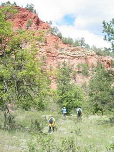 All about the Black Hills in South Dakota and you thought Mount Rushmore was the only attraction!Plan a Black Hills South Dakota Summer Vacation to enjoy tons of outdoor activities like hiking, horseback riding, boating, and motorcycle tours.