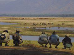 #mana #wilderness #safari #holiday