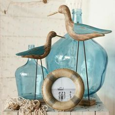Sea birds and glass
