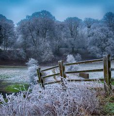 A frosty morning in Wiltshire.